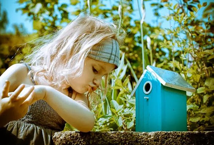 Histoires d'Enfant - Cabane pédagogiques